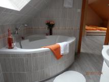 koupelna-kter-pat-k-ptilkovmu-pokoji