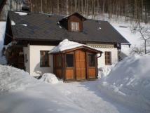 domeek-zima